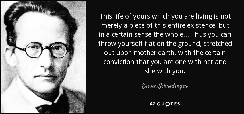 This life of yours which you are living is not merely a piece of this entire existence, but in a certain sense the whole... Thus you can throw yourself flat on the ground, stretched out upon mother earth, with the certain conviction that you are one with her and she with you. - Erwin Schrodinger