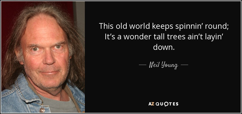 This old world keeps spinnin' round; It's a wonder tall trees ain't layin' down. - Neil Young