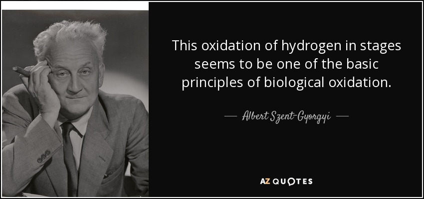 This oxidation of hydrogen in stages seems to be one of the basic principles of biological oxidation. - Albert Szent-Gyorgyi