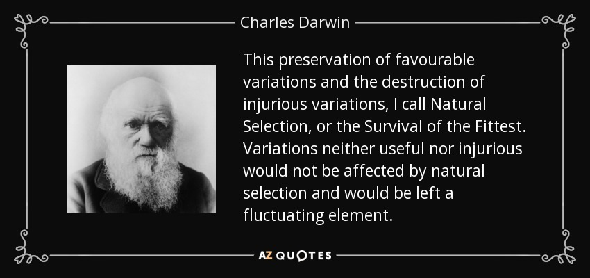 This preservation of favourable variations and the destruction of injurious variations, I call Natural Selection, or the Survival of the Fittest. Variations neither useful nor injurious would not be affected by natural selection and would be left a fluctuating element. - Charles Darwin