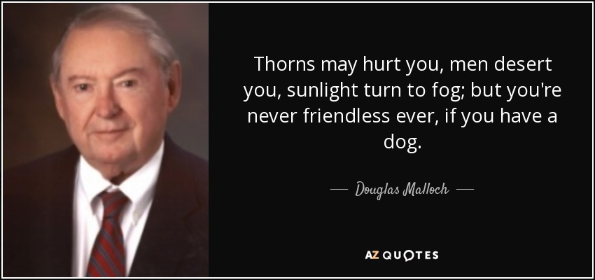 Thorns may hurt you, men desert you, sunlight turn to fog; but you're never friendless ever, if you have a dog. - Douglas Malloch
