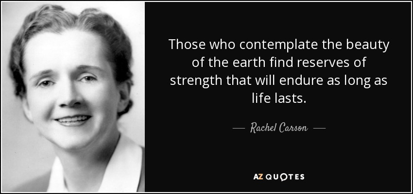 Those who contemplate the beauty of the earth find reserves of strength that will endure as long as life lasts. - Rachel Carson