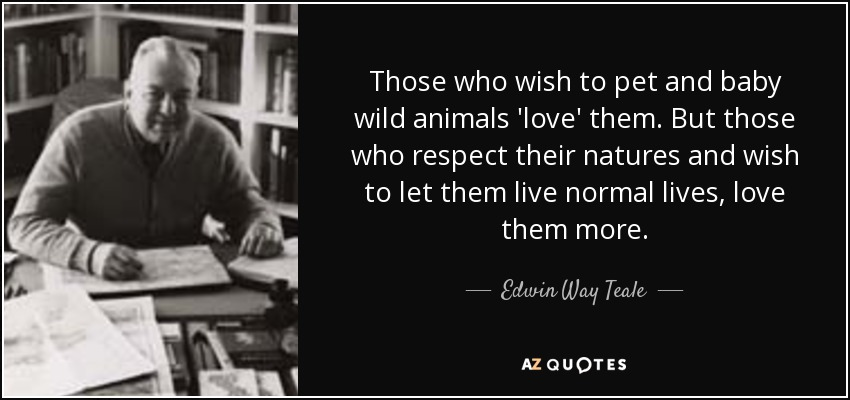 Those who wish to pet and baby wild animals 'love' them. But those who respect their natures and wish to let them live normal lives, love them more. - Edwin Way Teale