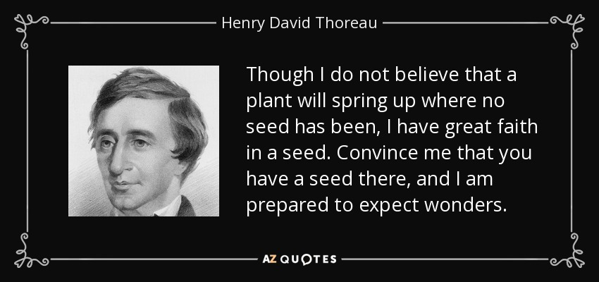 Though I do not believe that a plant will spring up where no seed has been, I have great faith in a seed. Convince me that you have a seed there, and I am prepared to expect wonders. - Henry David Thoreau