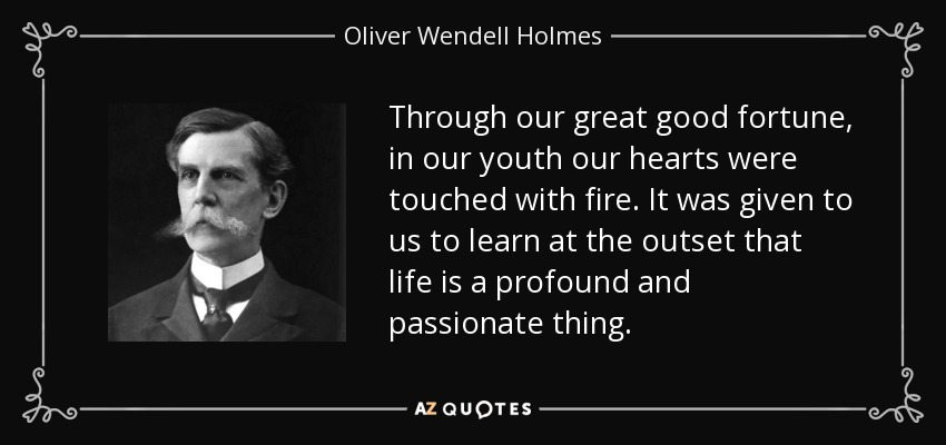 Through our great good fortune, in our youth our hearts were touched with fire. It was given to us to learn at the outset that life is a profound and passionate thing. - Oliver Wendell Holmes, Jr.