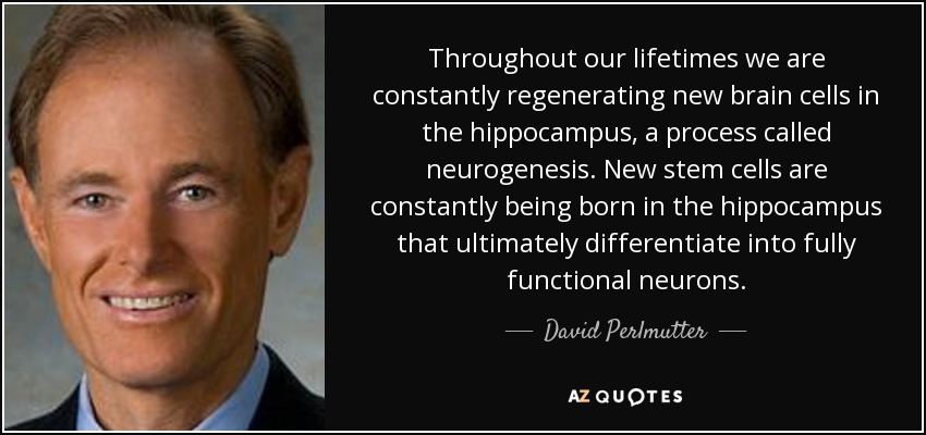 Throughout our lifetimes we are constantly regenerating new brain cells in the hippocampus, a process called neurogenesis. New stem cells are constantly being born in the hippocampus that ultimately differentiate into fully functional neurons. - David Perlmutter