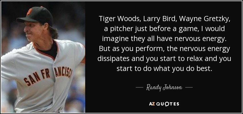 Tiger Woods, Larry Bird, Wayne Gretzky, a pitcher just before a game, I would imagine they all have nervous energy. But as you perform, the nervous energy dissipates and you start to relax and you start to do what you do best. - Randy Johnson