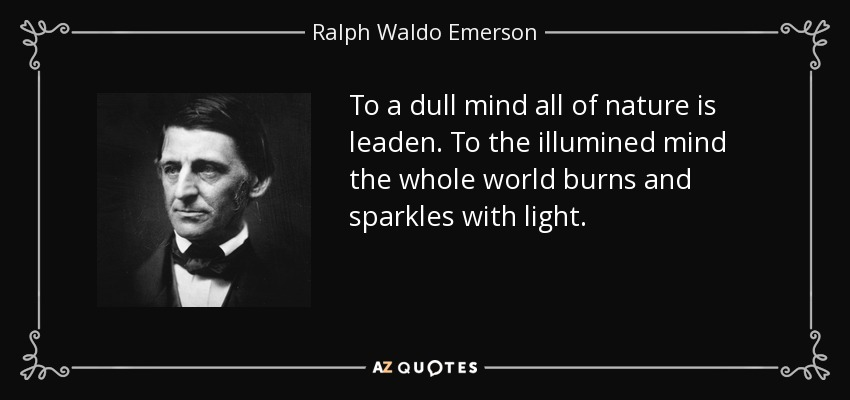 To a dull mind all of nature is leaden. To the illumined mind the whole world burns and sparkles with light. - Ralph Waldo Emerson