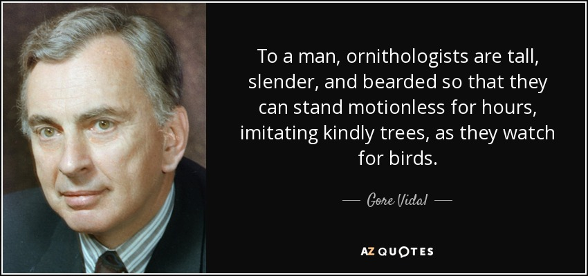 To a man, ornithologists are tall, slender, and bearded so that they can stand motionless for hours, imitating kindly trees, as they watch for birds. - Gore Vidal