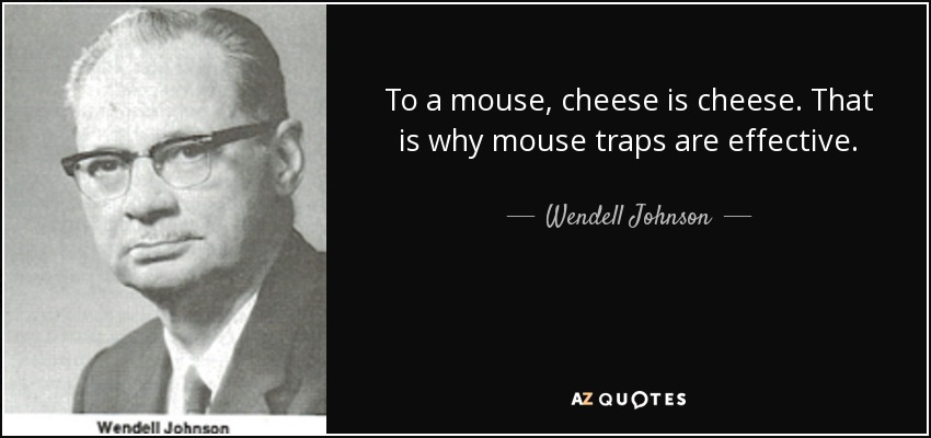 To a mouse, cheese is cheese. That is why mouse traps are effective. - Wendell Johnson