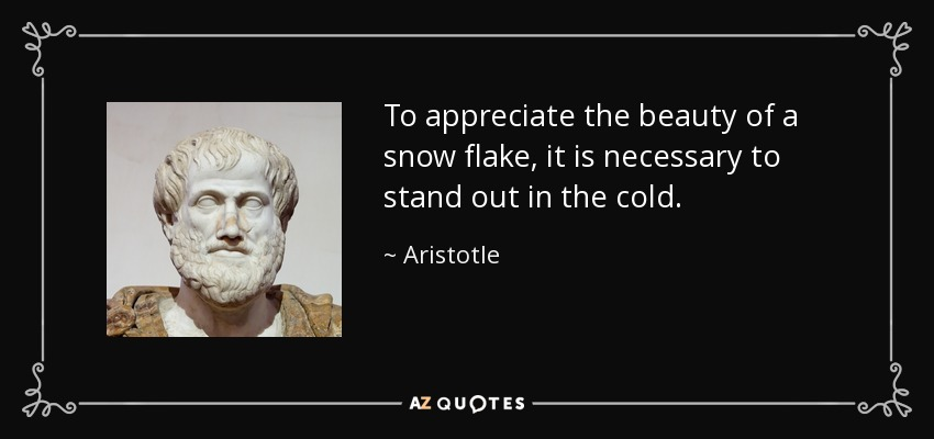 To appreciate the beauty of a snow flake, it is necessary to stand out in the cold. - Aristotle