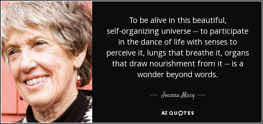To be alive in this beautiful, self-organizing universe -- to participate in the dance of life with senses to perceive it, lungs that breathe it, organs that draw nourishment from it -- is a wonder beyond words. - Joanna Macy