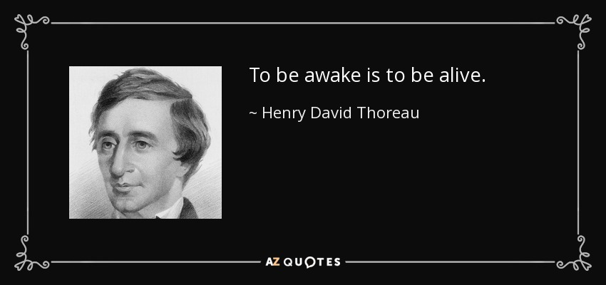 To be awake is to be alive. - Henry David Thoreau