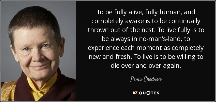 To be fully alive, fully human, and completely awake is to be continually thrown out of the nest. To live fully is to be always in no-man's-land, to experience each moment as completely new and fresh. To live is to be willing to die over and over again. - Pema Chodron