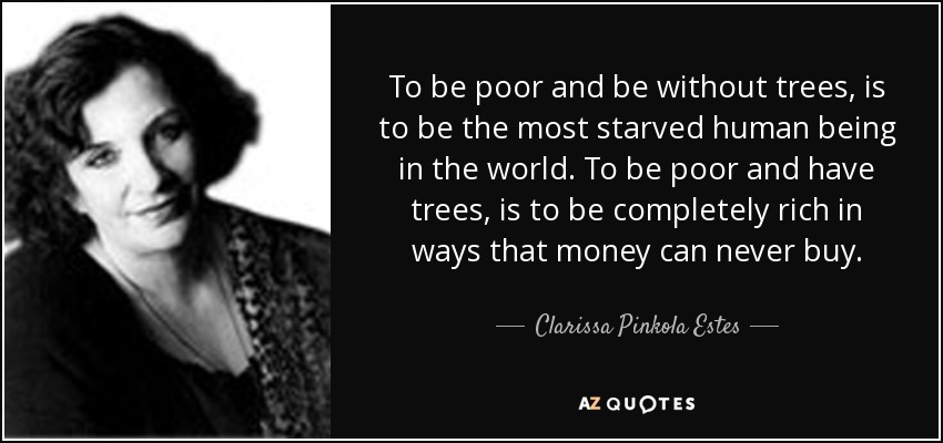 To be poor and be without trees, is to be the most starved human being in the world. To be poor and have trees, is to be completely rich in ways that money can never buy. - Clarissa Pinkola Estes