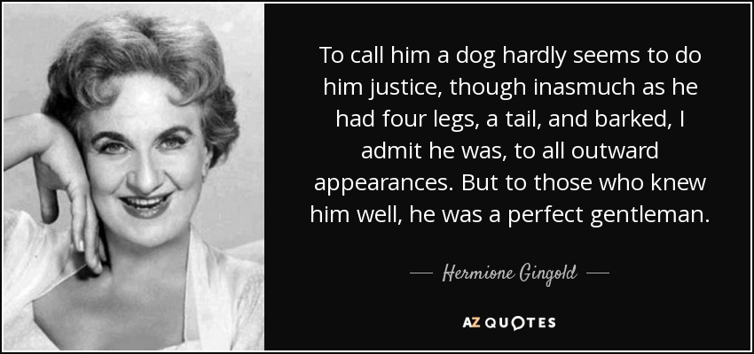 To call him a dog hardly seems to do him justice, though inasmuch as he had four legs, a tail, and barked, I admit he was, to all outward appearances. But to those who knew him well, he was a perfect gentleman. - Hermione Gingold