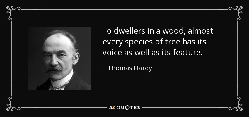 To dwellers in a wood, almost every species of tree has its voice as well as its feature. - Thomas Hardy