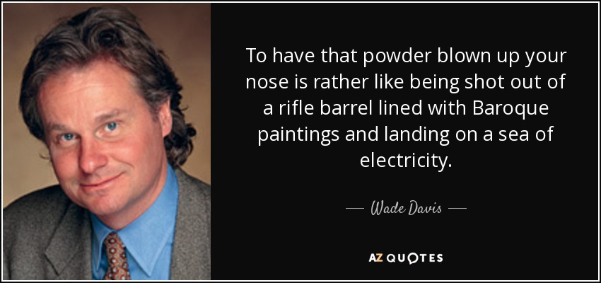 To have that powder blown up your nose is rather like being shot out of a rifle barrel lined with Baroque paintings and landing on a sea of electricity. - Wade Davis