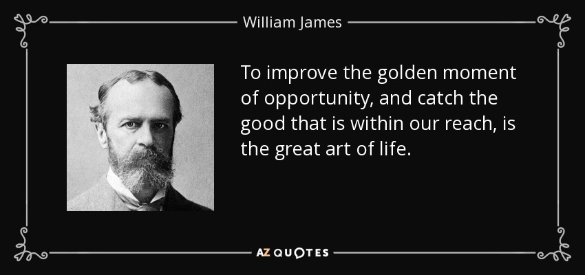 To improve the golden moment of opportunity, and catch the good that is within our reach, is the great art of life. - William James