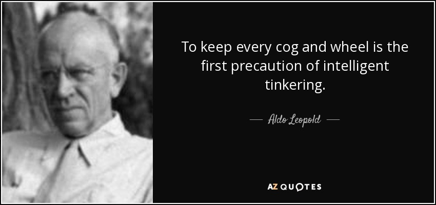 To keep every cog and wheel is the first precaution of intelligent tinkering. - Aldo Leopold