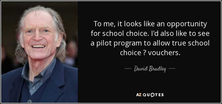To me, it looks like an opportunity for school choice. I'd also like to see a pilot program to allow true school choice ? vouchers. - David Bradley