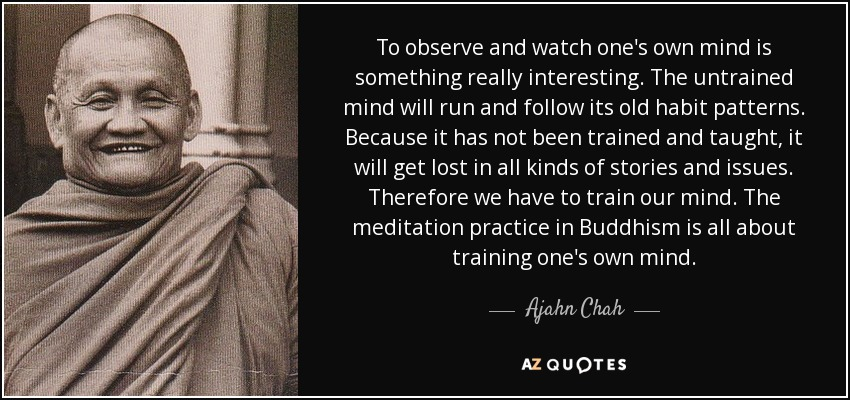 To observe and watch one's own mind is something really interesting. The untrained mind will run and follow its old habit patterns. Because it has not been trained and taught, it will get lost in all kinds of stories and issues. Therefore we have to train our mind. The meditation practice in Buddhism is all about training one's own mind. - Ajahn Chah