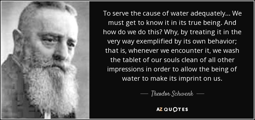 To serve the cause of water adequately... We must get to know it in its true being. And how do we do this? Why, by treating it in the very way exemplified by its own behavior; that is, whenever we encounter it, we wash the tablet of our souls clean of all other impressions in order to allow the being of water to make its imprint on us. - Theodor Schwenk