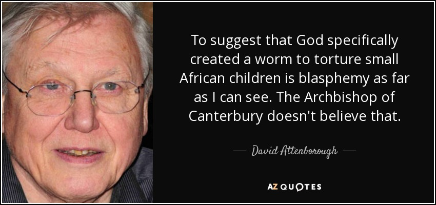 To suggest that God specifically created a worm to torture small African children is blasphemy as far as I can see. The Archbishop of Canterbury doesn't believe that. - David Attenborough