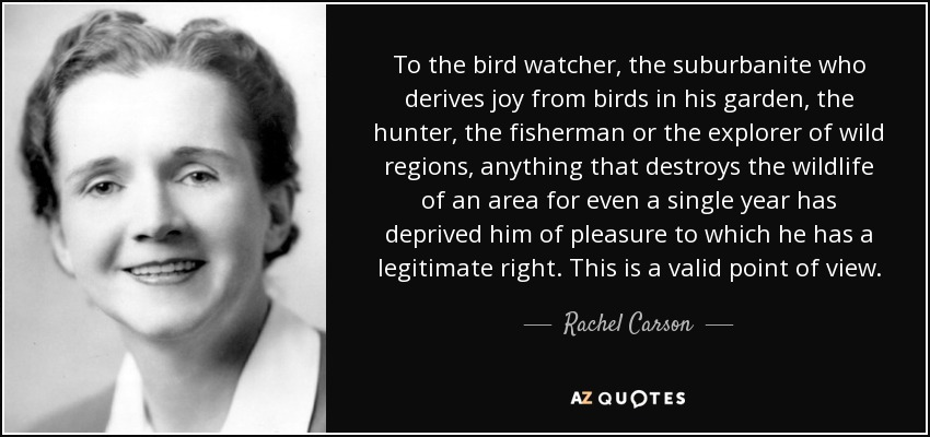 To the bird watcher, the suburbanite who derives joy from birds in his garden, the hunter, the fisherman or the explorer of wild regions, anything that destroys the wildlife of an area for even a single year has deprived him of pleasure to which he has a legitimate right. This is a valid point of view. - Rachel Carson
