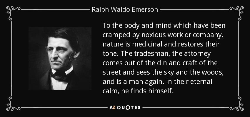 To the body and mind which have been cramped by noxious work or company, nature is medicinal and restores their tone. The tradesman, the attorney comes out of the din and craft of the street and sees the sky and the woods, and is a man again. In their eternal calm, he finds himself. - Ralph Waldo Emerson