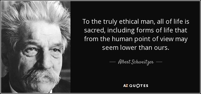 Human life is sacred essay