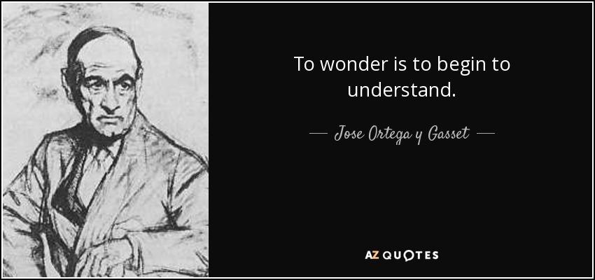 To wonder is to begin to understand. - Jose Ortega y Gasset