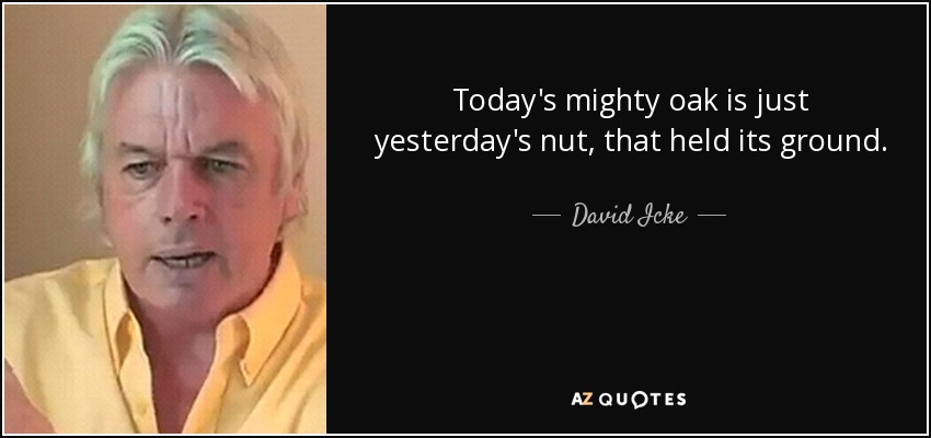 Today's mighty oak is just yesterday's nut, that held its ground. - David Icke