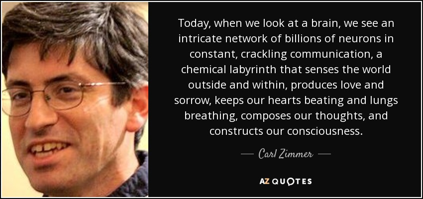 Today, when we look at a brain, we see an intricate network of billions of neurons in constant, crackling communication, a chemical labyrinth that senses the world outside and within, produces love and sorrow, keeps our hearts beating and lungs breathing, composes our thoughts, and constructs our consciousness. - Carl Zimmer