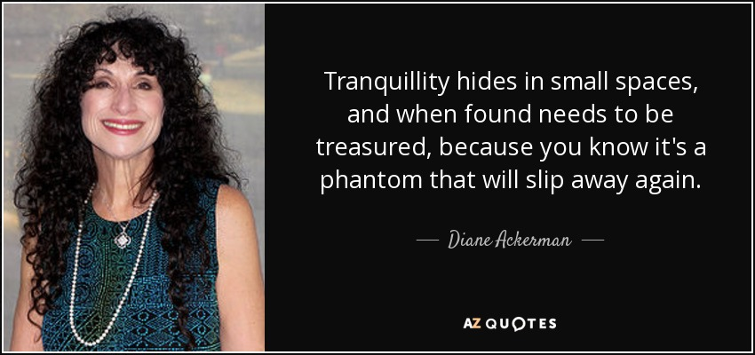 Tranquillity hides in small spaces, and when found needs to be treasured, because you know it's a phantom that will slip away again. - Diane Ackerman