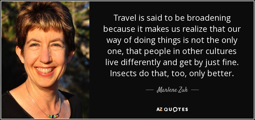 Travel is said to be broadening because it makes us realize that our way of doing things is not the only one, that people in other cultures live differently and get by just fine. Insects do that, too, only better. - Marlene Zuk