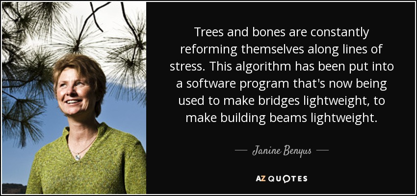 Trees and bones are constantly reforming themselves along lines of stress. This algorithm has been put into a software program that's now being used to make bridges lightweight, to make building beams lightweight. - Janine Benyus
