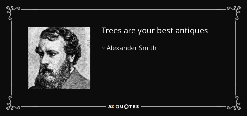 Trees are your best antiques - Alexander Smith