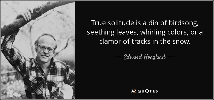 True solitude is a din of birdsong, seething leaves, whirling colors, or a clamor of tracks in the snow. - Edward Hoagland