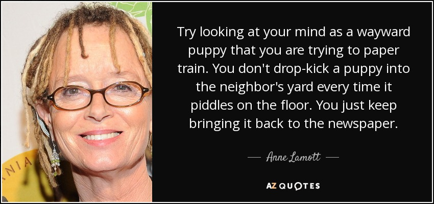 Try looking at your mind as a wayward puppy that you are trying to paper train. You don't drop-kick a puppy into the neighbor's yard every time it piddles on the floor. You just keep bringing it back to the newspaper. - Anne Lamott