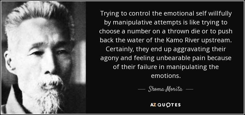 Trying to control the emotional self willfully by manipulative attempts is like trying to choose a number on a thrown die or to push back the water of the Kamo River upstream. Certainly, they end up aggravating their agony and feeling unbearable pain because of their failure in manipulating the emotions. - Shoma Morita