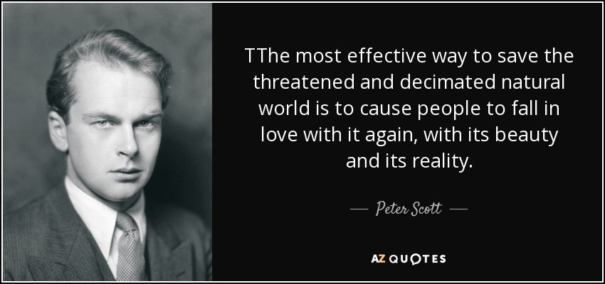 TThe most effective way to save the threatened and decimated natural world is to cause people to fall in love with it again, with its beauty and its reality. - Peter Scott