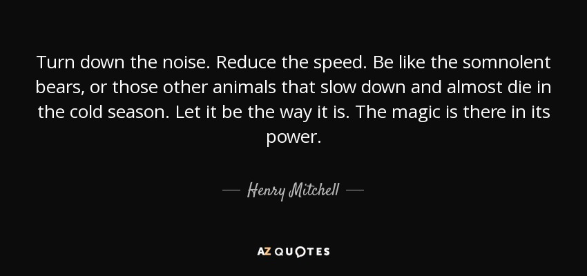 Turn down the noise. Reduce the speed. Be like the somnolent bears, or those other animals that slow down and almost die in the cold season. Let it be the way it is. The magic is there in its power. - Henry Mitchell