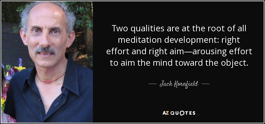 Two qualities are at the root of all meditation development: right effort and right aim—arousing effort to aim the mind toward the object. - Jack Kornfield