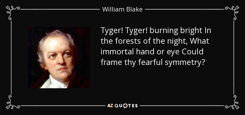 Tyger! Tyger! burning bright In the forests of the night, What immortal hand or eye Could frame thy fearful symmetry? - William Blake