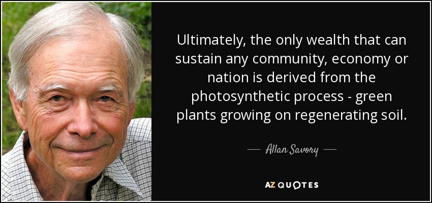 Ultimately, the only wealth that can sustain any community, economy or nation is derived from the photosynthetic process - green plants growing on regenerating soil. - Allan Savory