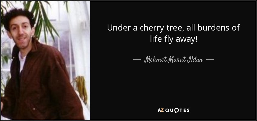 Under a cherry tree, all burdens of life fly away! - Mehmet Murat Ildan