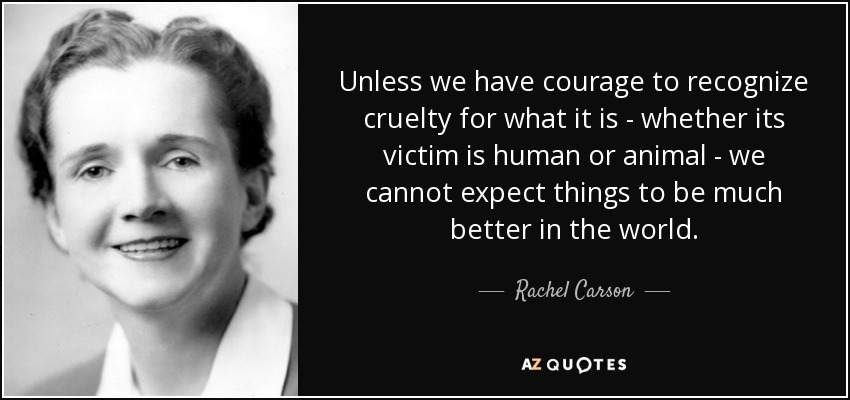 Unless we have courage to recognize cruelty for what it is - whether its victim is human or animal - we cannot expect things to be much better in the world. - Rachel Carson