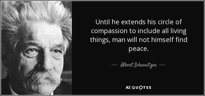 Until he extends his circle of compassion to include all living things, man will not himself find peace. - Albert Schweitzer