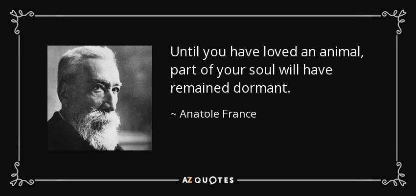 Until you have loved an animal, part of your soul will have remained dormant. - Anatole France